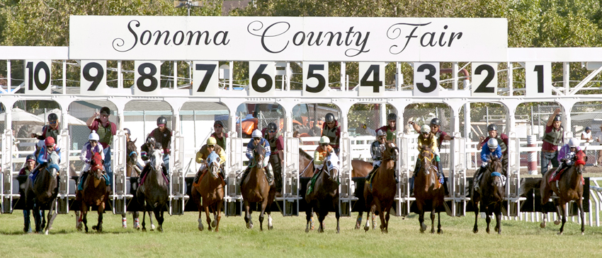Horse Racing In The Wine Country Sonoma County Fairgrounds