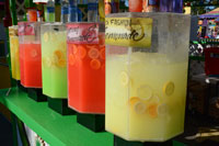 Lemonade at the Sonoma County Fair